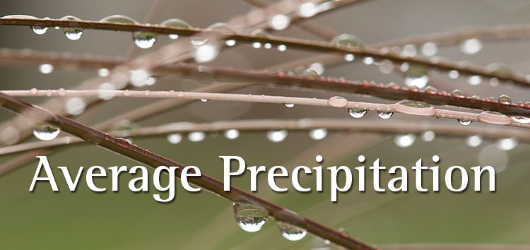 Average precip